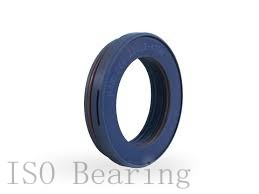 ISO RNA4956 needle roller bearings
