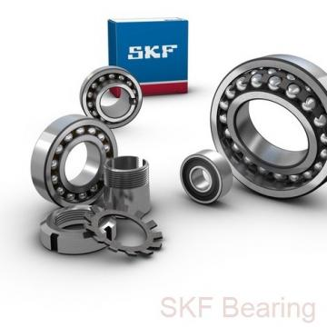 SKF GEG 100 ES plain bearings